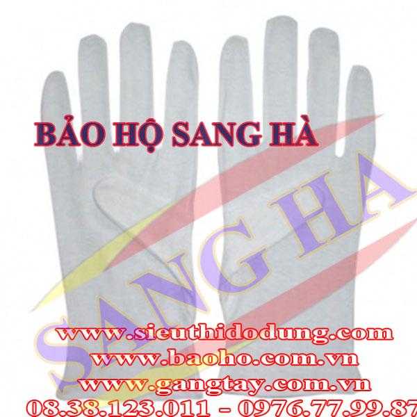 Găng tay thun lạnh - Thường