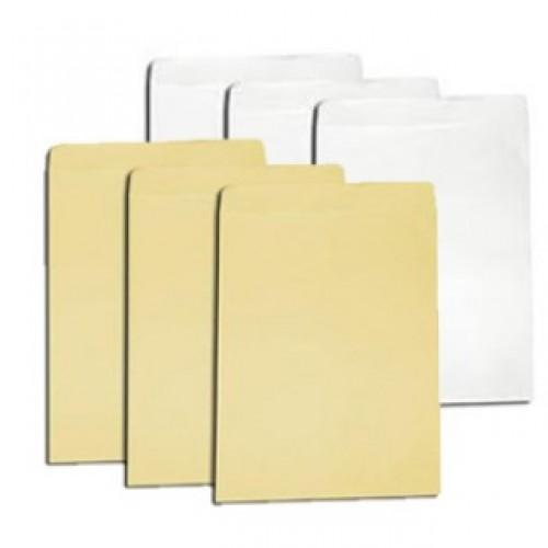 Bao đựng hồ sơ trắng